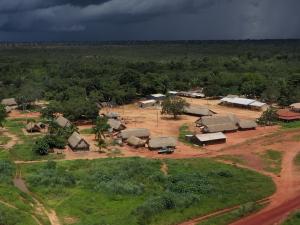 Amazonie : enquête sur la déforestation – JT 20h TF1